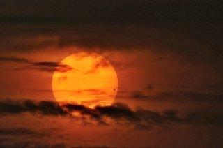 Černý kotouček Venuše před Sluncem při přechodu 8. června 2004. Foto: David Cortner.
